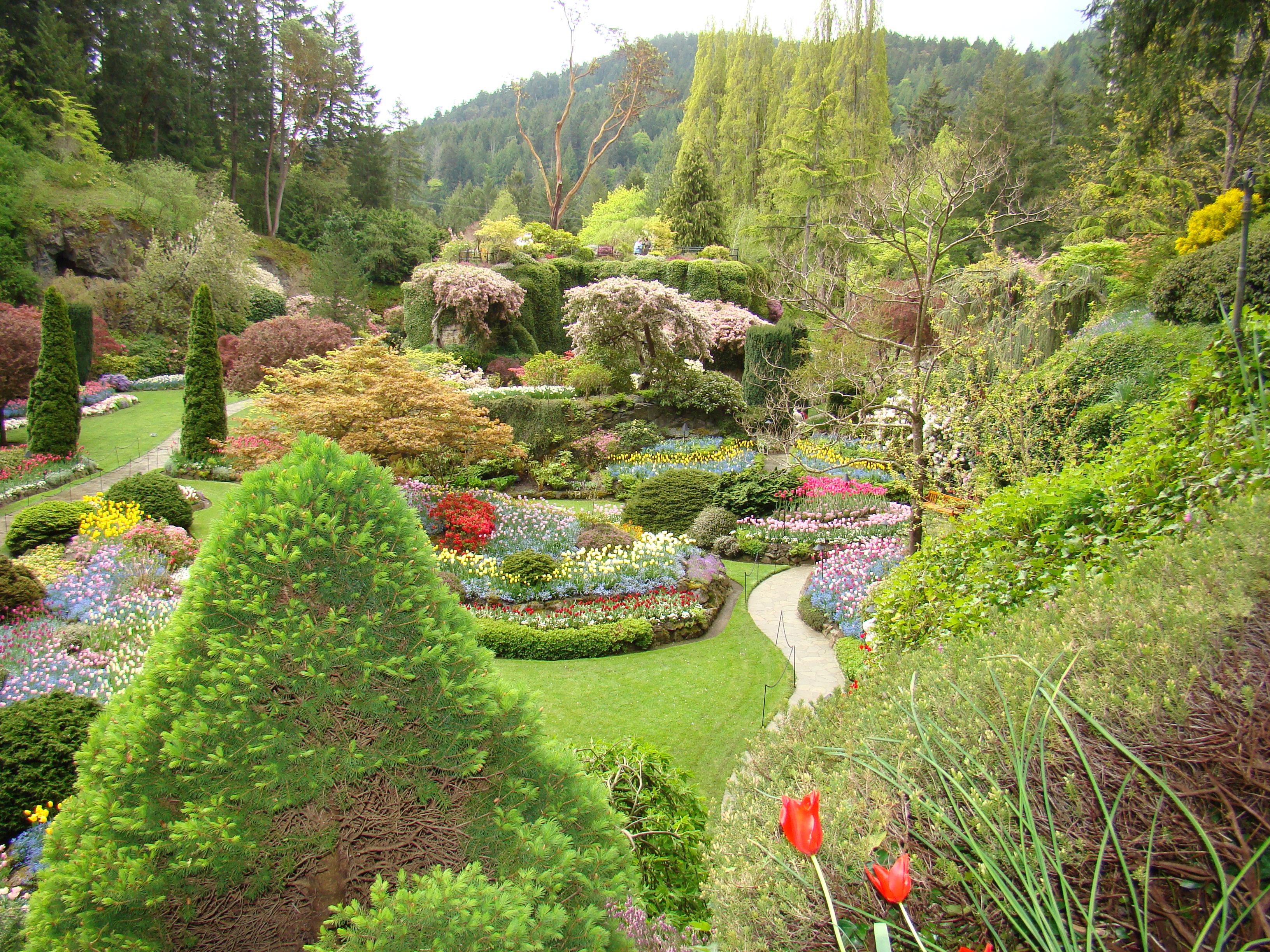 Garden Design Victoria Bc butchart gardens – victoria b.c.   making history tart & titillating