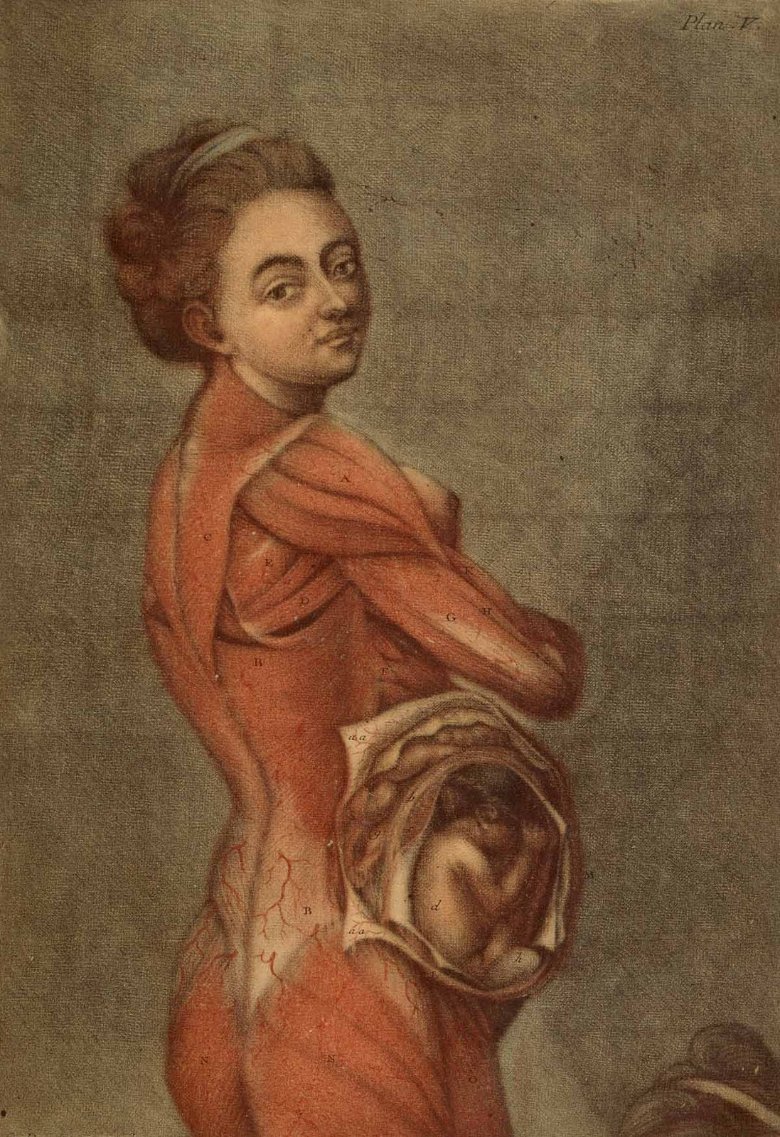 A Beautiful Anatomy Gautier Dagotys Mezzotints Making History