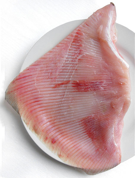 uncooked skate wing